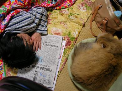 2010.12-shar2.JPG