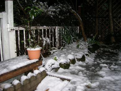 2010.2-snow.JPG