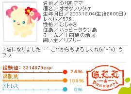 2011.1.16-main.JPG
