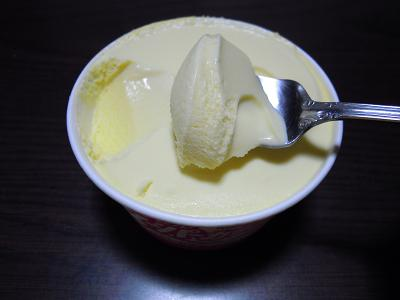 2011.3-ice4.JPG